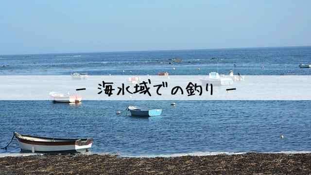 海水域での釣り